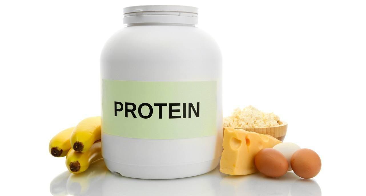 Sugar Free Protein Powder Diabetes