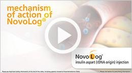 How Novolog® Works