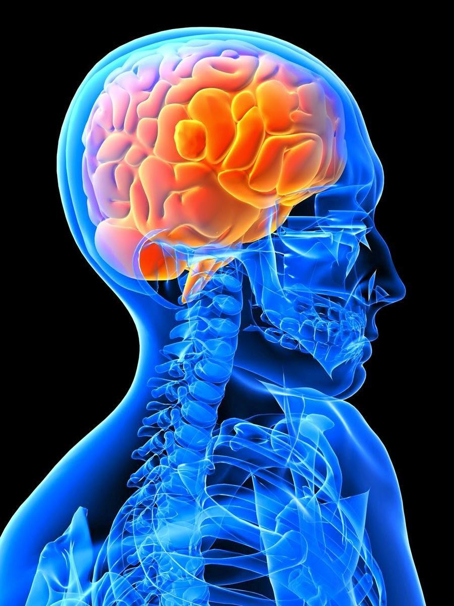 Alzheimer's Disease: Type 3 Diabetes