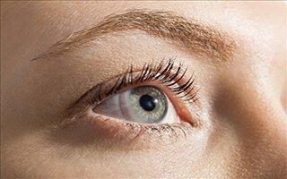 Glaucoma Diabetes Of The Brain