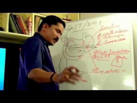 The Pathophysiologic Role Of Incretins