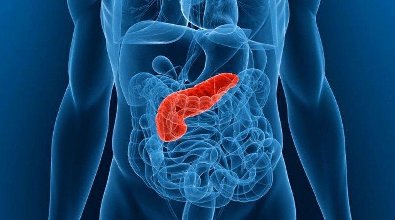 How To Detoxify Pancreas Naturally