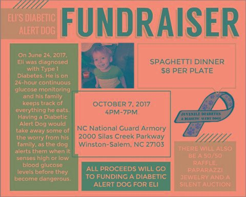 Diabetic Alert Dog Fundraiser