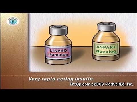 Is Humalog a rapid acting insulin?