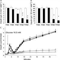 Early Manifestations In Multiple-low-dose Streptozotocin-induced Diabetes In Mice