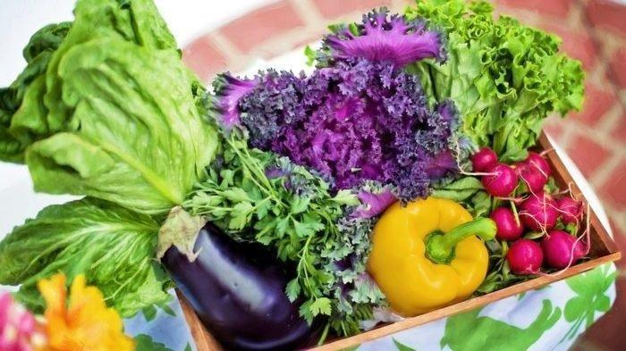 Diabetic? 5 Reasons To Eat A Plant-based Diet