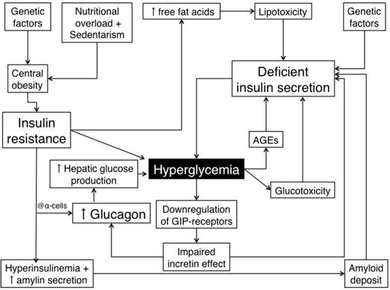 The Role Of Glucagon On Type 2 Diabetes At A Glance