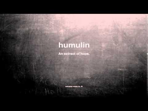 What Is The Definition Of Humulin?