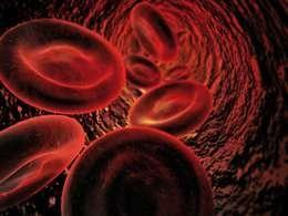 Why Does Glucose Damage Blood Vessels?