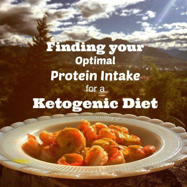 Finding Your Optimal Protein Intake For A Ketogenic Diet